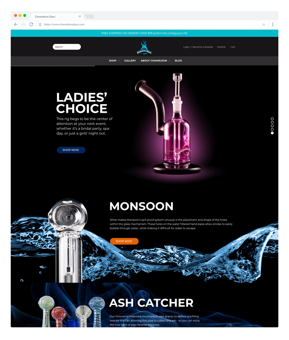 chameleon-glass-homepage.png
