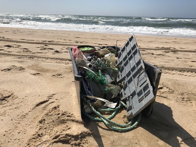 beach garbage in bin with water view.JPG