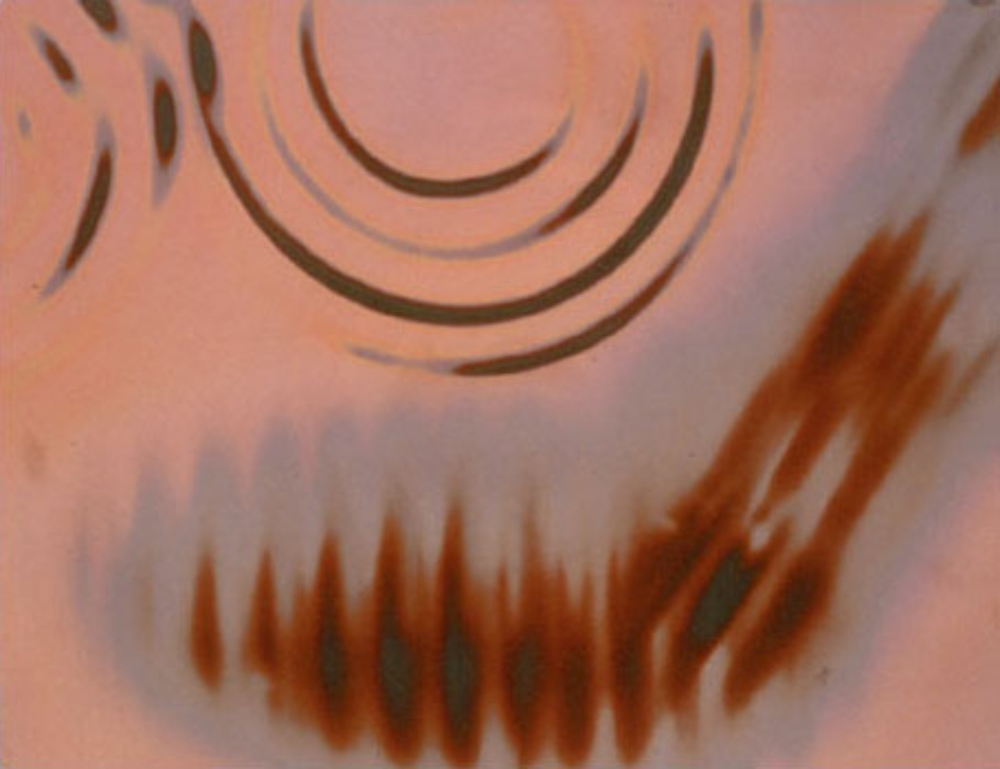 "Heat on Photographic Paper 8.5"" X 11"" (22cm X 28cm)  1991"