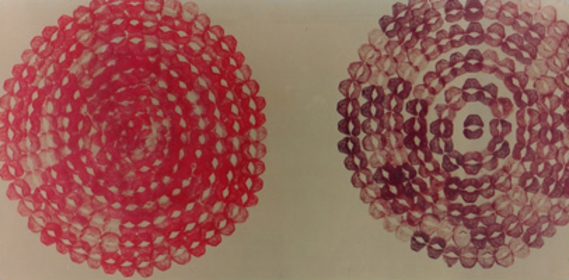 "Kisses on Photographic Paper 46"" X 30"" (122cm X 77cm)  1992"
