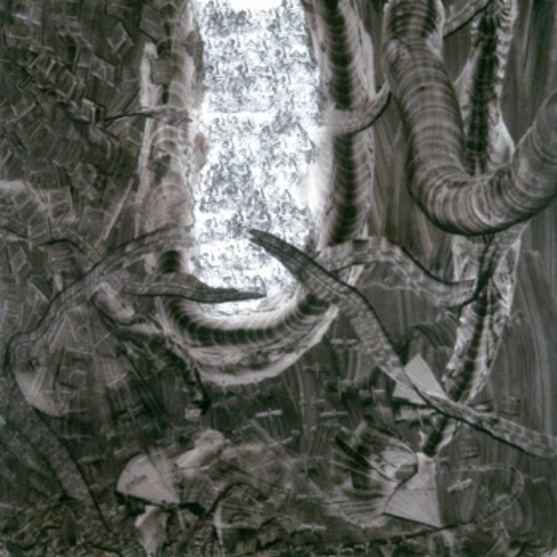 "Graphite on Wax Paper 44"" X 44"" (110cm X 110cm)  1993"