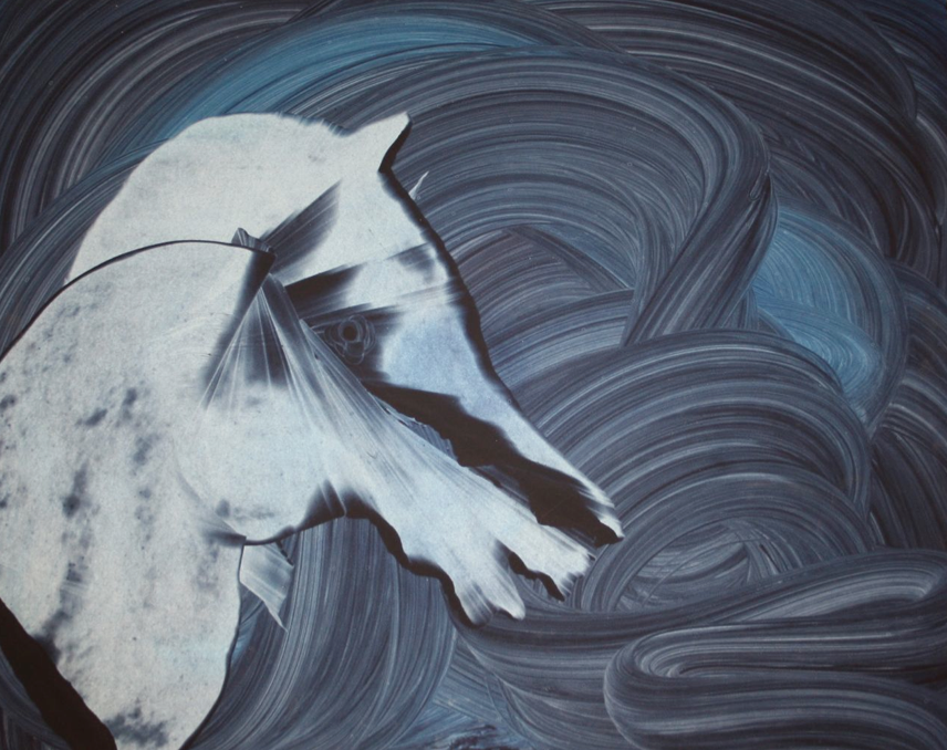 Untitled No 5 (Horse Series)_Oil on paper_23inx29in_2011.png