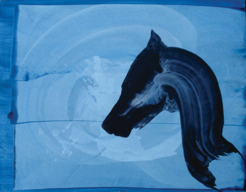 Untitled No. 2 (Horse Series)_Oil on paper_23inx29in_2011.png