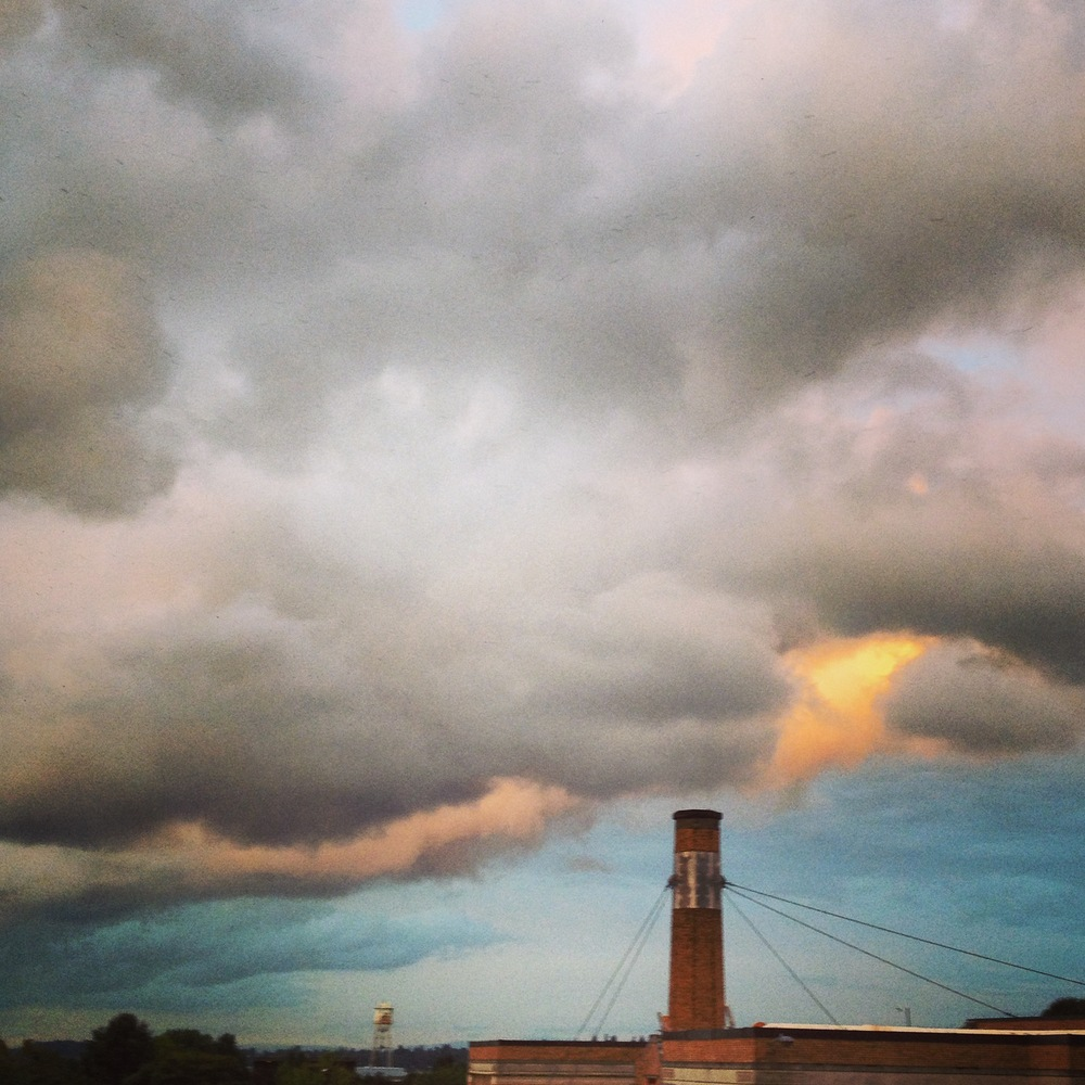 Chapman Elementary chimney, where the swifts roost every fall on their migration southward.