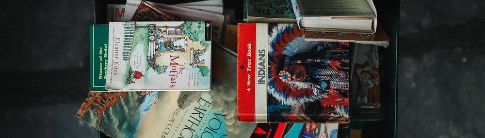 lvan Bjørn Book Covers