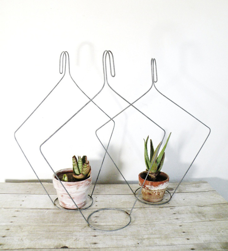Plant hangers from hangers.
