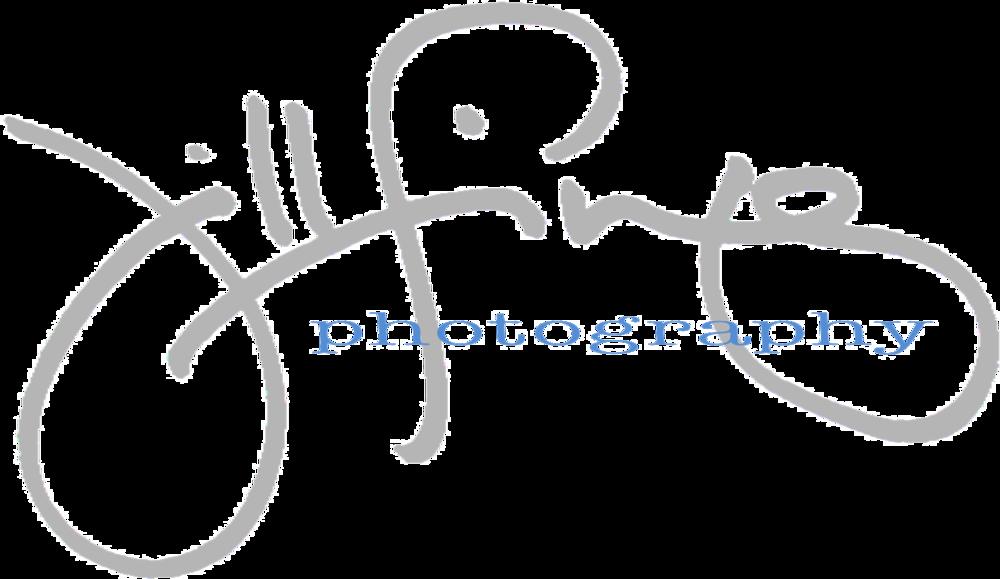 Jill-Fineis-Logo.png