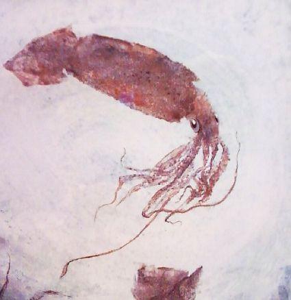 gyotaku_squid1238455347.jpg