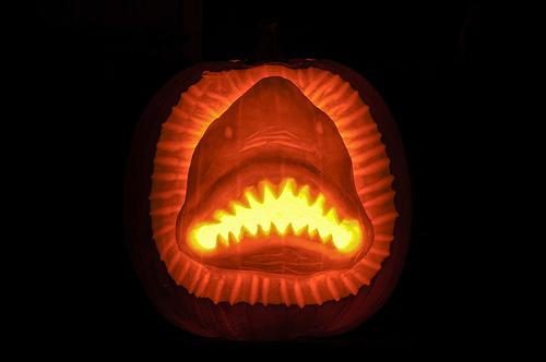 sharkpumpkin2.jpg