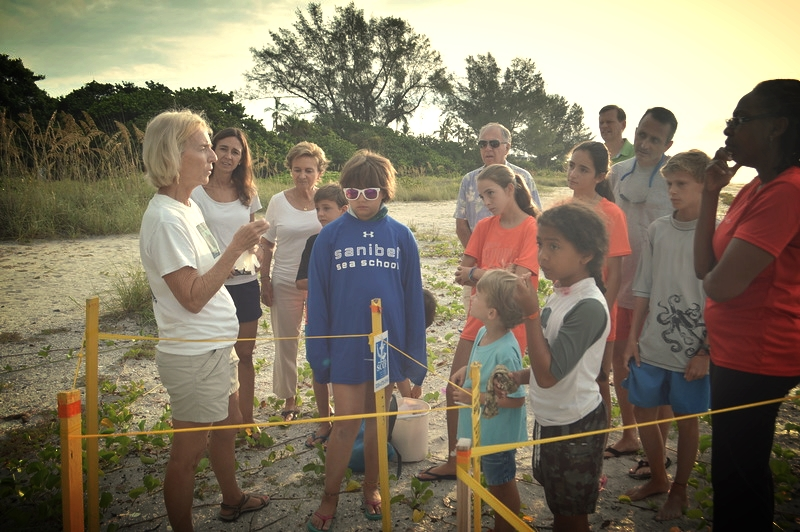 SCCF volunteer Nancy Riley conducts a sea turtle nest inventory while Sanibel Sea School campers observe.