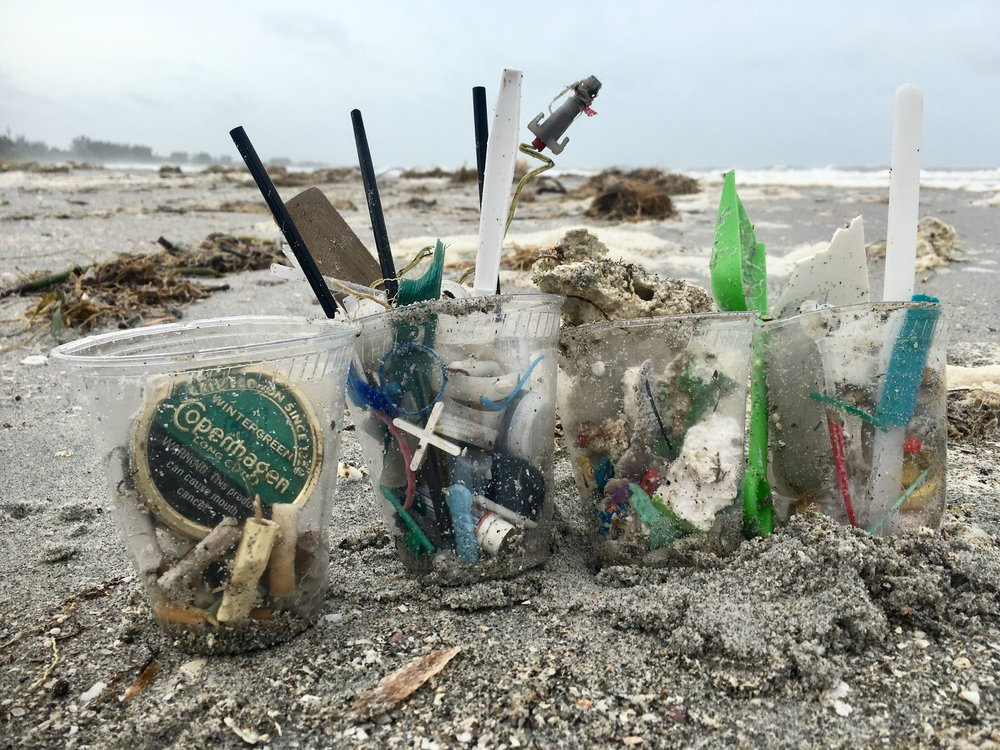 Items collected during a beach cleanup on Captiva.