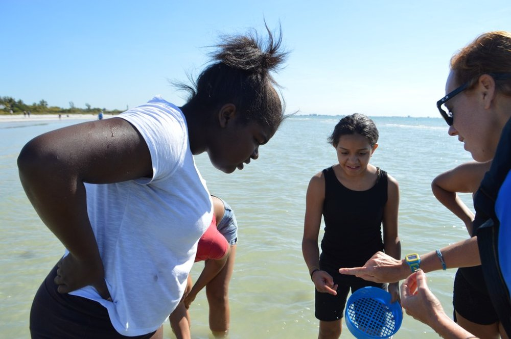 Students from the Pine Manor Improvement Association's Teen Program examine a tiny marine worm on a recent outing with Sanibel Sea School.