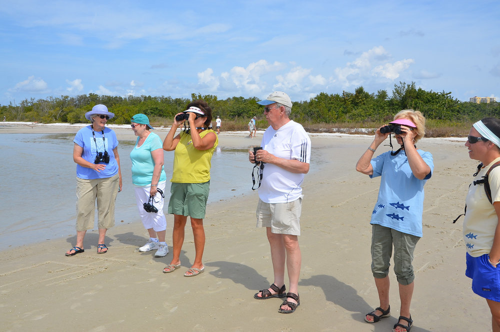Sanibel Sea School will offer a series of birding classes in 2018.