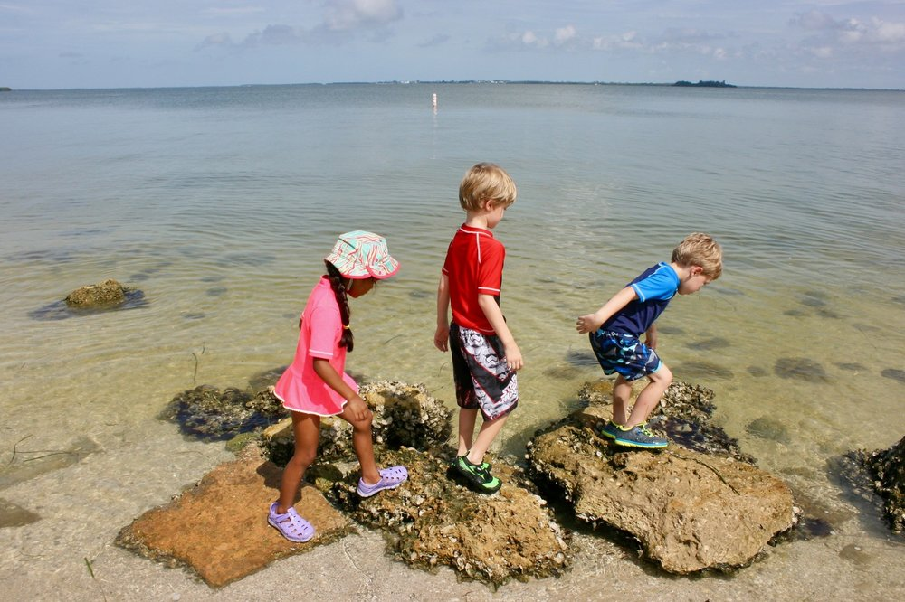 Young children can explore the ocean during Sanibel Sea School's Sea Squirts Day Camps.