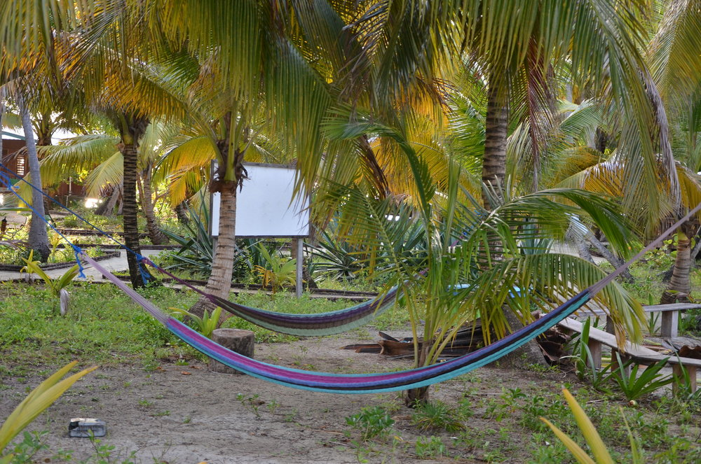 Hammocks waiting to be lounged in.