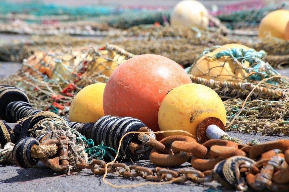 buoy-1402943_1280.jpg