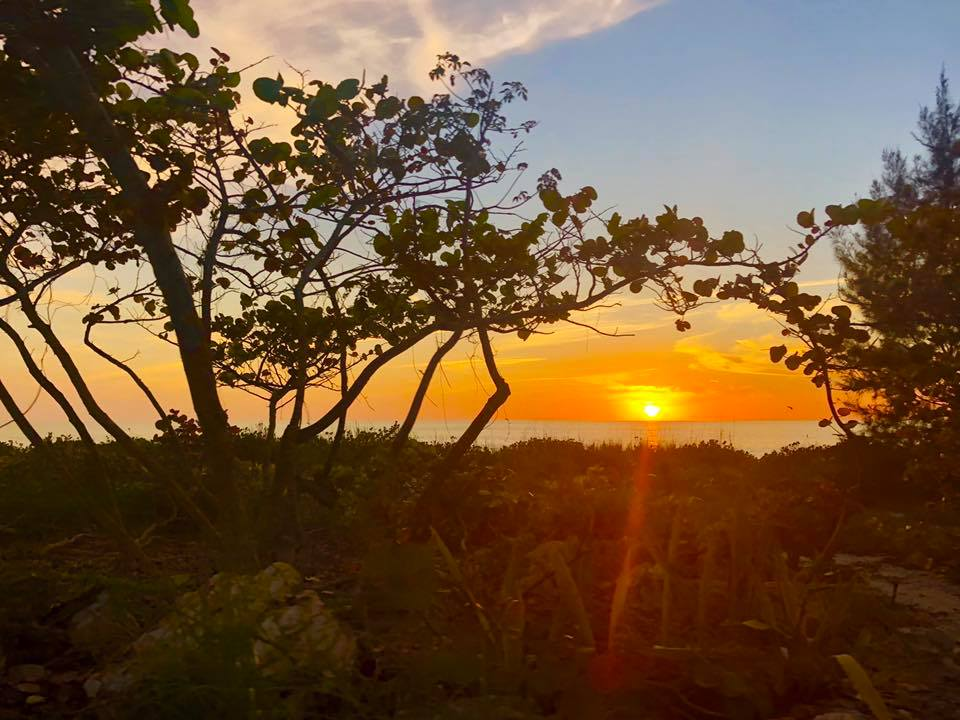 Kate shares beautiful images of the islands through her On Island social media channels, and enjoys helping people feel connected to Sanibel and Captiva from anywhere. Photo credit Kate Sergeant.