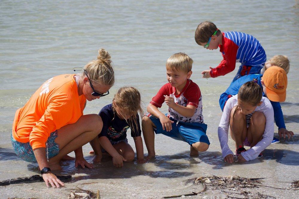 Children and families staying at Casa Ybel Resort can now enjoy Sanibel Sea School's ocean education programs at their doorstep.