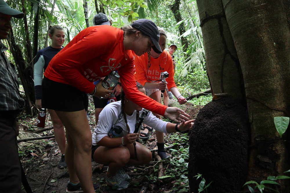An expedition to Belize for older campers begins in the rainforest and ends at a coral reef.