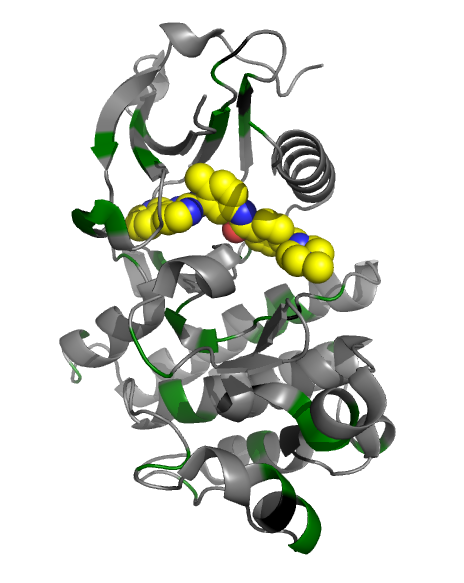 Abl residues observed mutated in tumors (superimposed on pdb:2HYY)