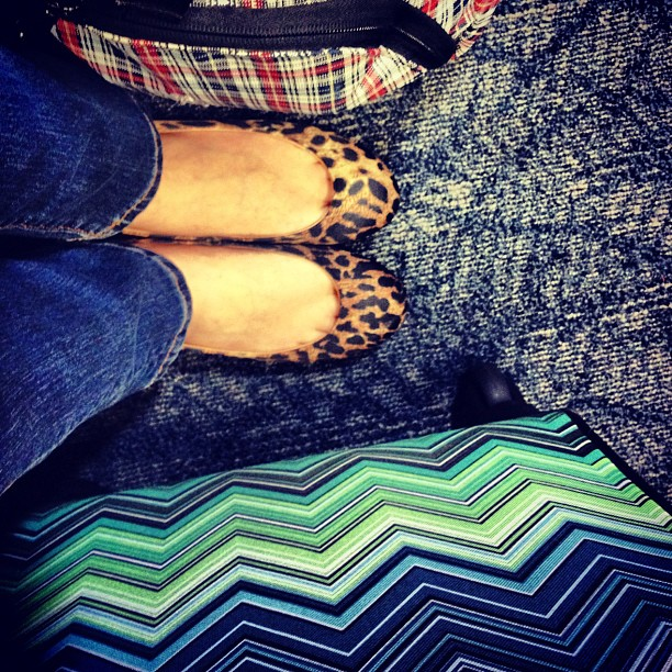 All about #mismatched #pattern #leopard #tartan #zigzag ugly #LAX carpet ❤ (Taken with  Instagram )