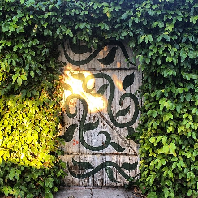 Walking around #losangeles you can find the entrance to the #secretgarden ☀️🌿