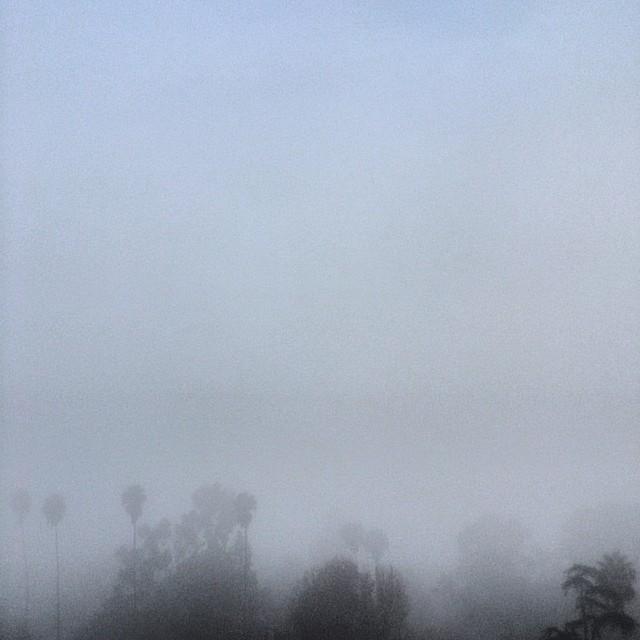 The #fog was awesome this morning. Finally felt like a season haha #latergram #losangeles #iheartla