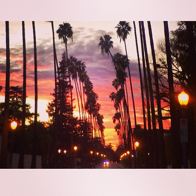#beauty of a ride home. #everydayisforriding #sunset #losangeles