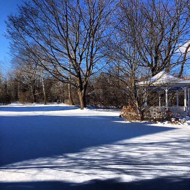 Long winter shadows are the best. Going to miss you #homesweethome #ontario #canada #lanscape 😍😘