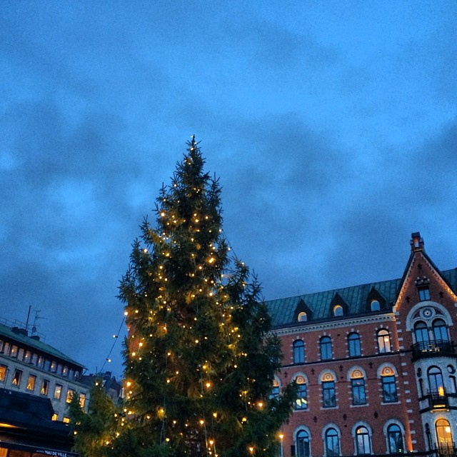 Early morning walk and they put the lights on for me. Thank you #Stockholm #christmasvibes #love this city #luckygirl to #travel