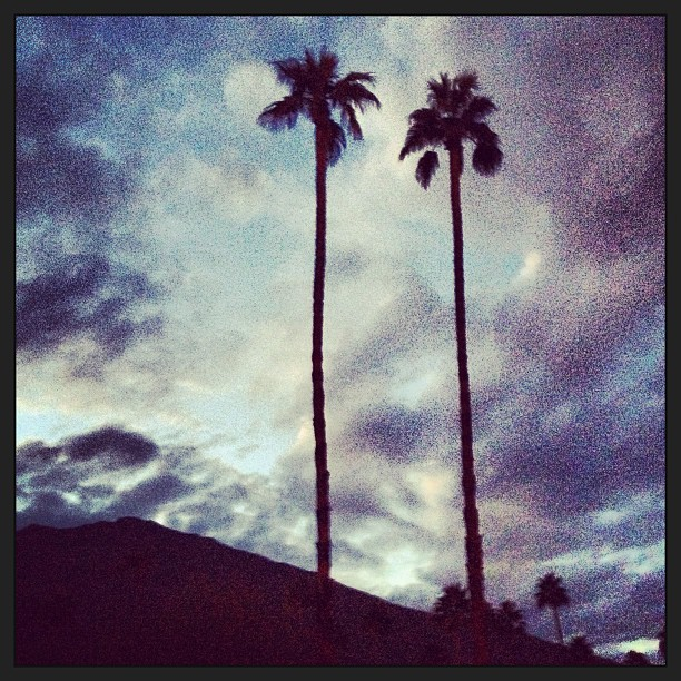 #twin#palms#desert#latergram#sunset#luckygirl