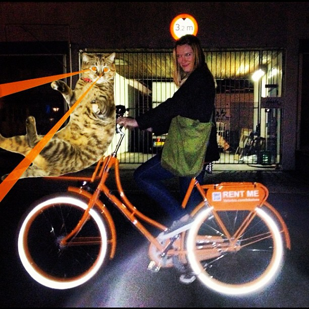 #rentme or my cat we have #lasereyes #shenanigans #copenhagen awesome @velorbis bikes #lasercats #2012 (Taken with  Instagram )