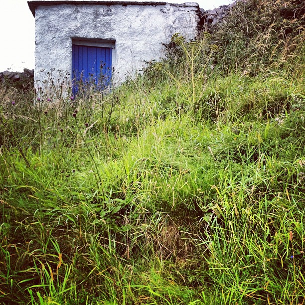 #outhouse with a stunning #blue #door #aran #islands #inishoirr  (Taken with  Instagram )
