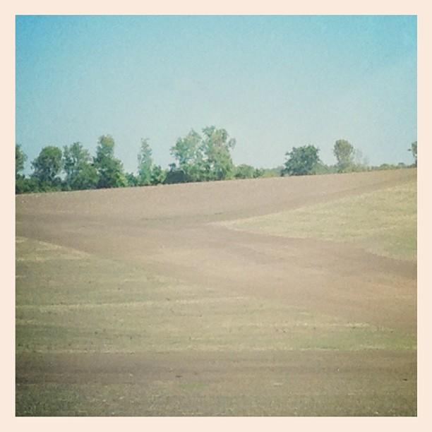 Zig zag #ontario #field  (Taken with  instagram )