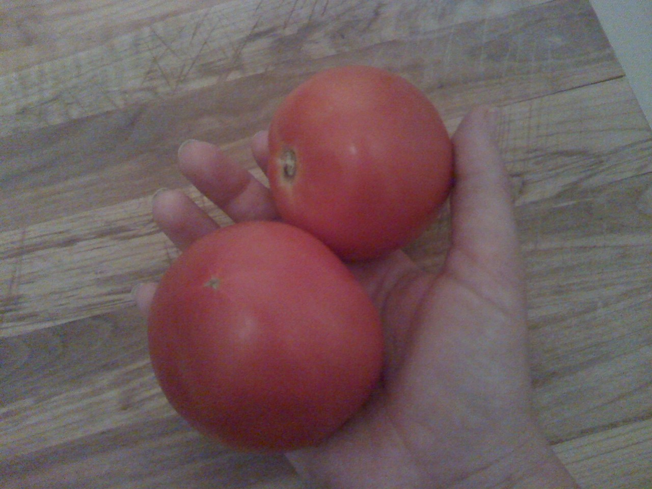 I just picked our first two tomatoes.  At 10:57 pm, on our second floor porch with the last bits of a thunderstorm crackling in the purple sky.   They are lovely, perfect, and ours.