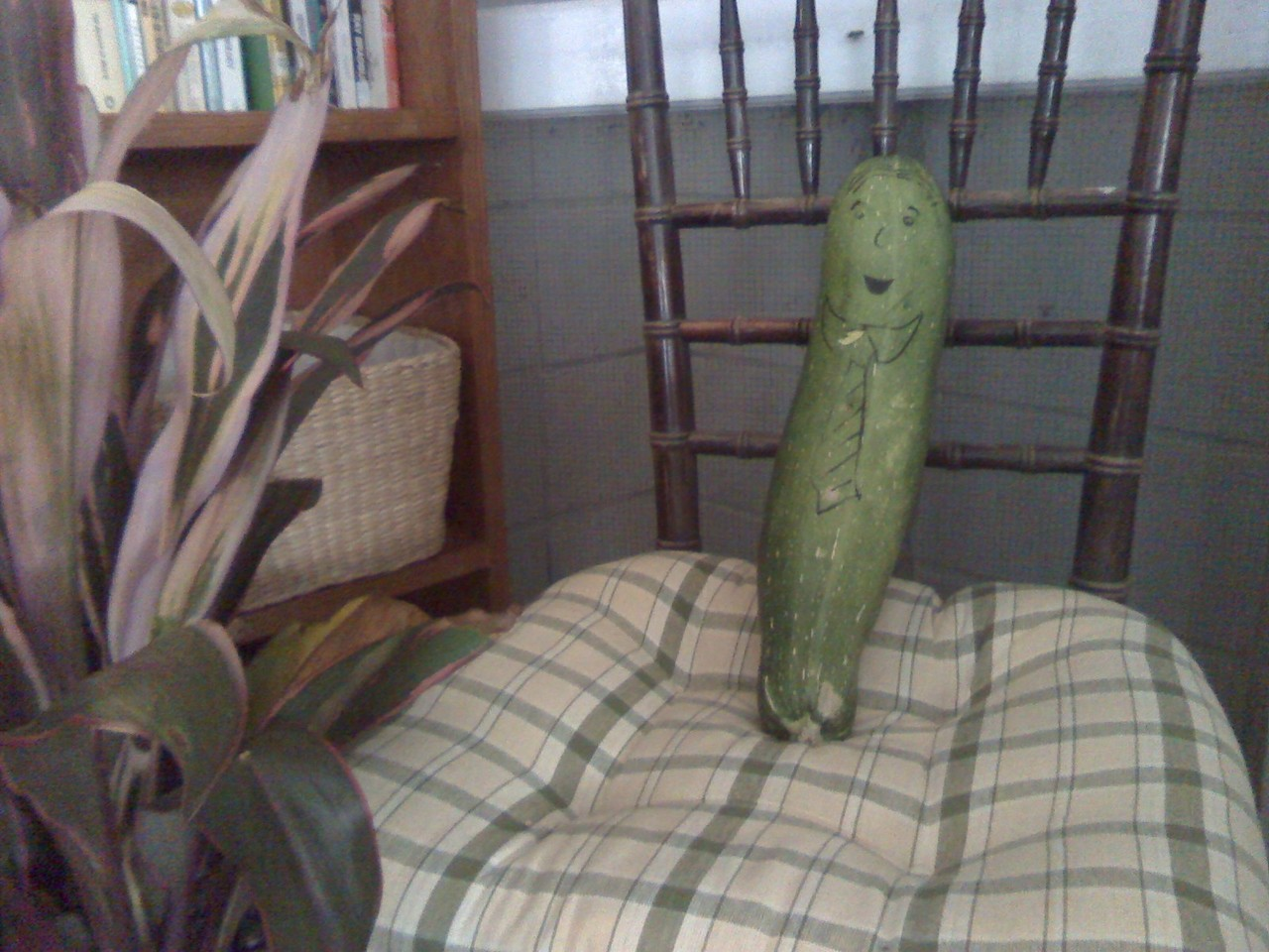 On Friday, during my 7th period study hall, I finally got them all quiet and working.  Then, Robby bursts through the door wielding…a GIANT ZUCHINNI! So we put a face on him and showed him around.  Out the window, to other classes…etc. Robby took him home over the weekend, but Mr. Z came back to sit in my reading corner this morning. This is what it means to be a teacher.