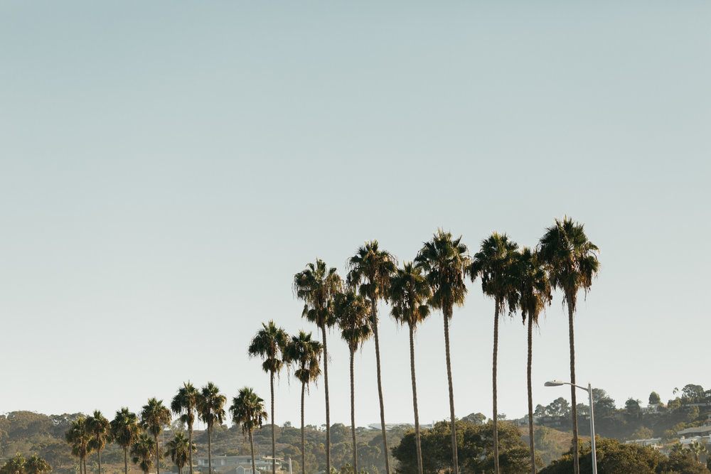 La-Jolla-California-Wedding-Anna-Howard-Studios-0003.jpg