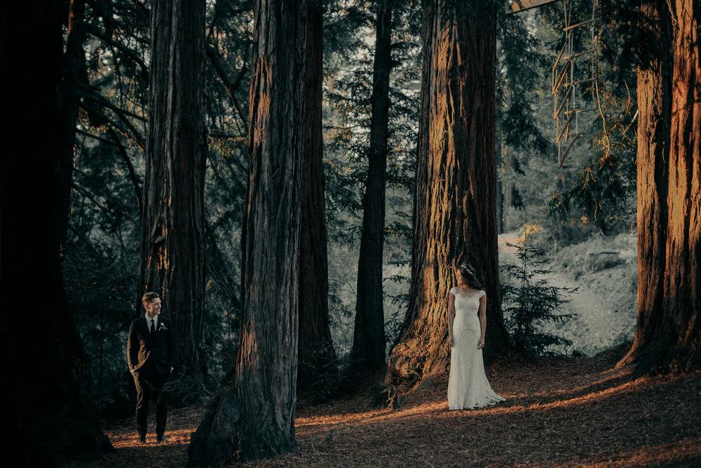 Kennolyn-Santa-Cruz-California-Wedding-Anna-Howard-Studios-0154.jpg