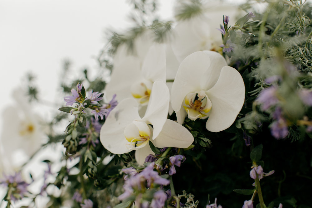 Carmel-California-Wedding-Anna-Howard-Studios-0045.jpg