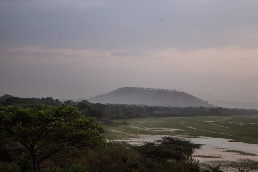 Views over lake Awassa