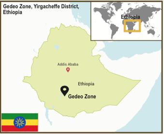 Ethiopia_Yirgacheffe_Konga_Map