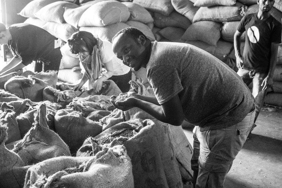 Ethiopia Dumerso Surafel Coffee