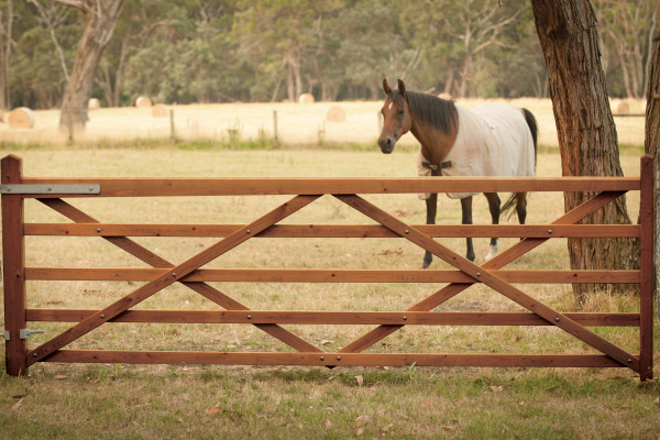 Replace your steel gate with stunning timber gates at the same cost.