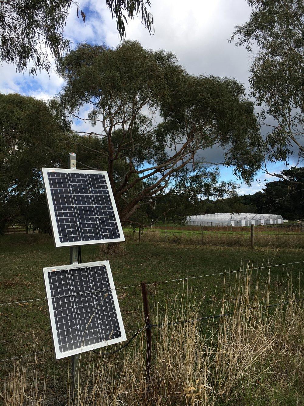 Solar Powered Automation