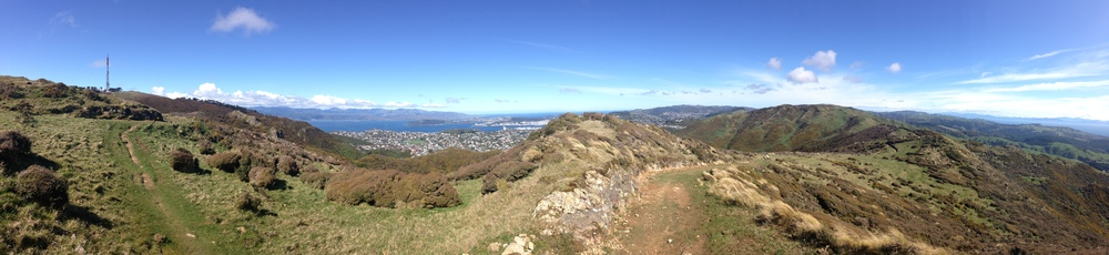 ...and back over Wellington City