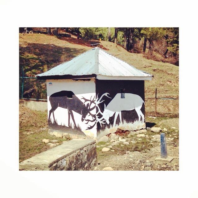 Sherpa Hut