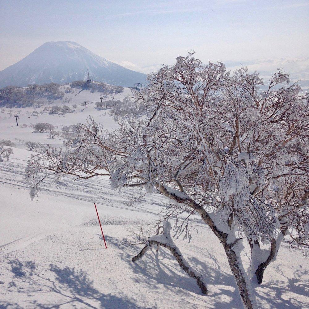 Mt Yotei from Mt Annapuri, Niseko, Hokkaido, Japan