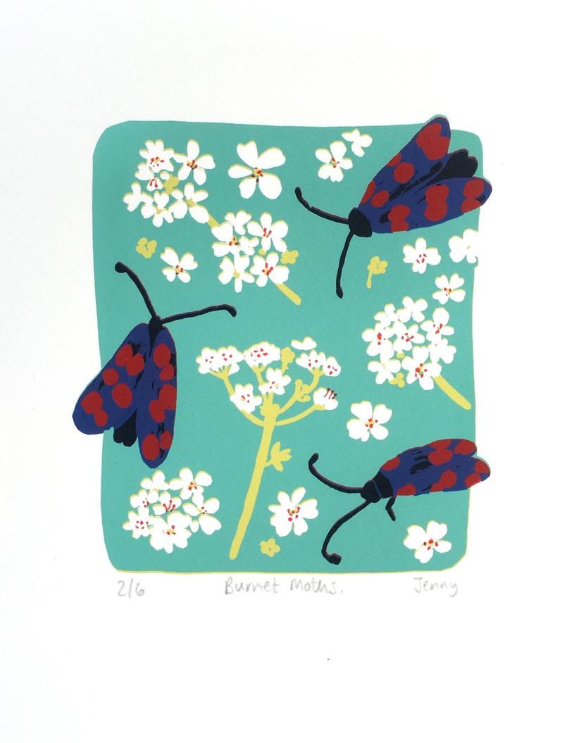 Burnet Moths  screen print  paper size - 19cm x 23.5cm  image size - 12cm x 14cm  £73