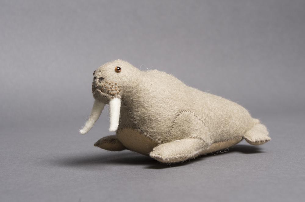 Lillian Bixler  Walrus