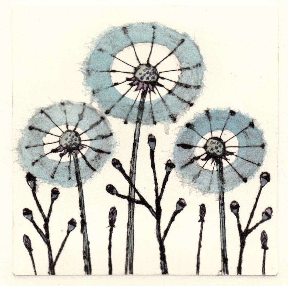 Three Dandelions  drypoint  12 x 12cm  £49 unframed